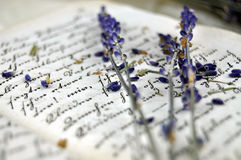 Lavender and Old Book Stock Photography