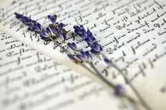 Lavender and Old Book Royalty Free Stock Photo