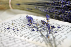 Lavender and Old Book Royalty Free Stock Images