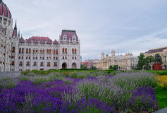 Lavender and other flowers in front of Hungarian Parliament Royalty Free Stock Photo