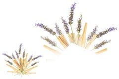 Lavender Palo Santo Bouquet Isolated