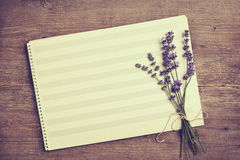 Lavender and paper music notes Royalty Free Stock Photos