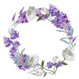 Lavender and peony round frame vector template Royalty Free Stock Photo