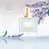 Lavender Perfume bottle Cosmetic ads template, droplet mock up  on dazzling background. Place for brand text Royalty Free Stock Photos