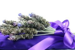 Lavender Pillow and Bunch. A bunch of fresh lavender tied with ribbon on lavender filled satin pillow Royalty Free Stock Image