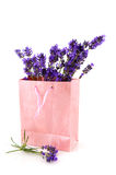 Lavender in pink paper bag Royalty Free Stock Image
