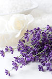 Lavender plant and bathsalt Royalty Free Stock Image