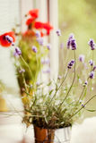 Lavender and poppy Stock Images