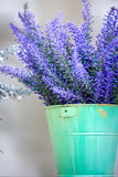 Lavender in the pot. On the street stock photo
