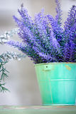Lavender in the pot. On a wooden stand royalty free stock image