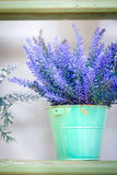 Lavender in the pot. On a wooden stand royalty free stock photo