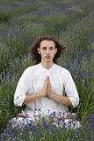 Lavender prayer Stock Photography