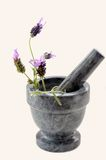 Lavender Preparation Stock Image