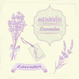 Lavender product labels. Royalty Free Stock Photo
