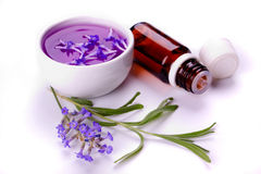 Lavender products Stock Images