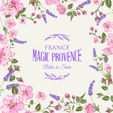 Lavender provence card. Stock Photography