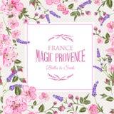Lavender provence card. Stock Photos