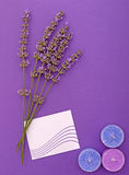 Lavender relaxation background Stock Images