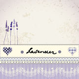 Lavender retro background Royalty Free Stock Image