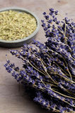 Lavender and Rosemary. Dried lavender and rosemary Stock Image