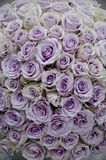 Lavender roses centerpiece flowers Royalty Free Stock Image