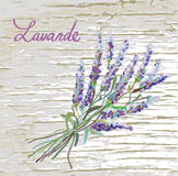 Lavender rustic background with nice design Stock Photos