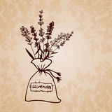 Lavender sachet sketch bouquet Royalty Free Stock Photography