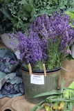 Lavender For Sale royalty free stock image