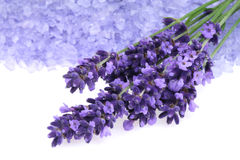 Lavender and salt Royalty Free Stock Images
