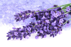 Lavender and salt Royalty Free Stock Photo