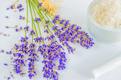 Lavender with sea salt Stock Photos