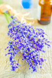 Lavender with sea salt Royalty Free Stock Photo