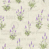 The Lavender Seamless frame line. Royalty Free Stock Image