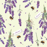 Lavender seamless pattern Royalty Free Stock Photos