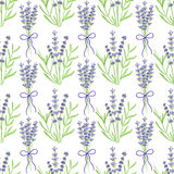 Lavender. Seamless pattern with flowers. Hand Stock Images