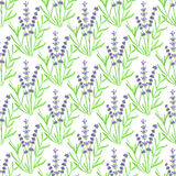 Lavender. Seamless pattern with flowers. Hand Stock Image
