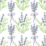 Lavender. Seamless pattern with flowers. Hand Royalty Free Stock Image