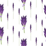 Lavender seamless pattern. Provence violet bouquet bush. Stock Photos