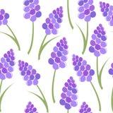 Lavender seamless pattern Royalty Free Stock Image