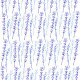 Lavender seamless vector pattern hand drawn graphic flower texture background, sketch isolated on white, Perfect for. Lavender seamless vector pattern hand drawn Royalty Free Stock Image
