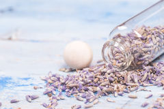 Lavender seeds background Royalty Free Stock Photo