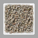 Lavender seeds in a bowl Stock Image