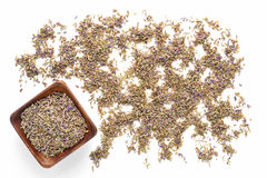 Lavender Seeds over White Background Royalty Free Stock Images