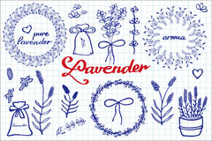 Lavender set. Hand-drawn cartoon lavandula. Collection - flowers, calligraphy, floral elements. Doodle drawing by blue pen on the notebook sheet. Vector stock illustration
