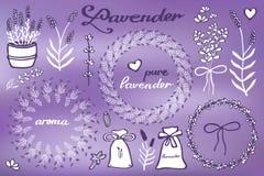 Lavender set. Hand-drawn cartoon lavandula. Collection - flowers, calligraphy, floral elements. Doodle drawing. Vector illustration vector illustration