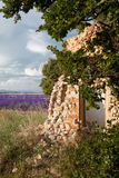 Lavender shed Royalty Free Stock Photos