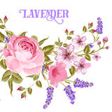 The Lavender sign. Royalty Free Stock Photo