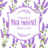 Lavender sign label. Frame of lavender flowers on a white background. Label of soap package. Label with lavender flowers. Vector illustration Stock Photography