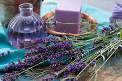Lavender soap and perfume oil, made from fresh lavender flowers, aroma spa treathment and bodycare for women. Lavender soap and natural perfumed oil, made from royalty free stock images