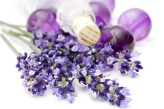 Lavender spa Stock Photography